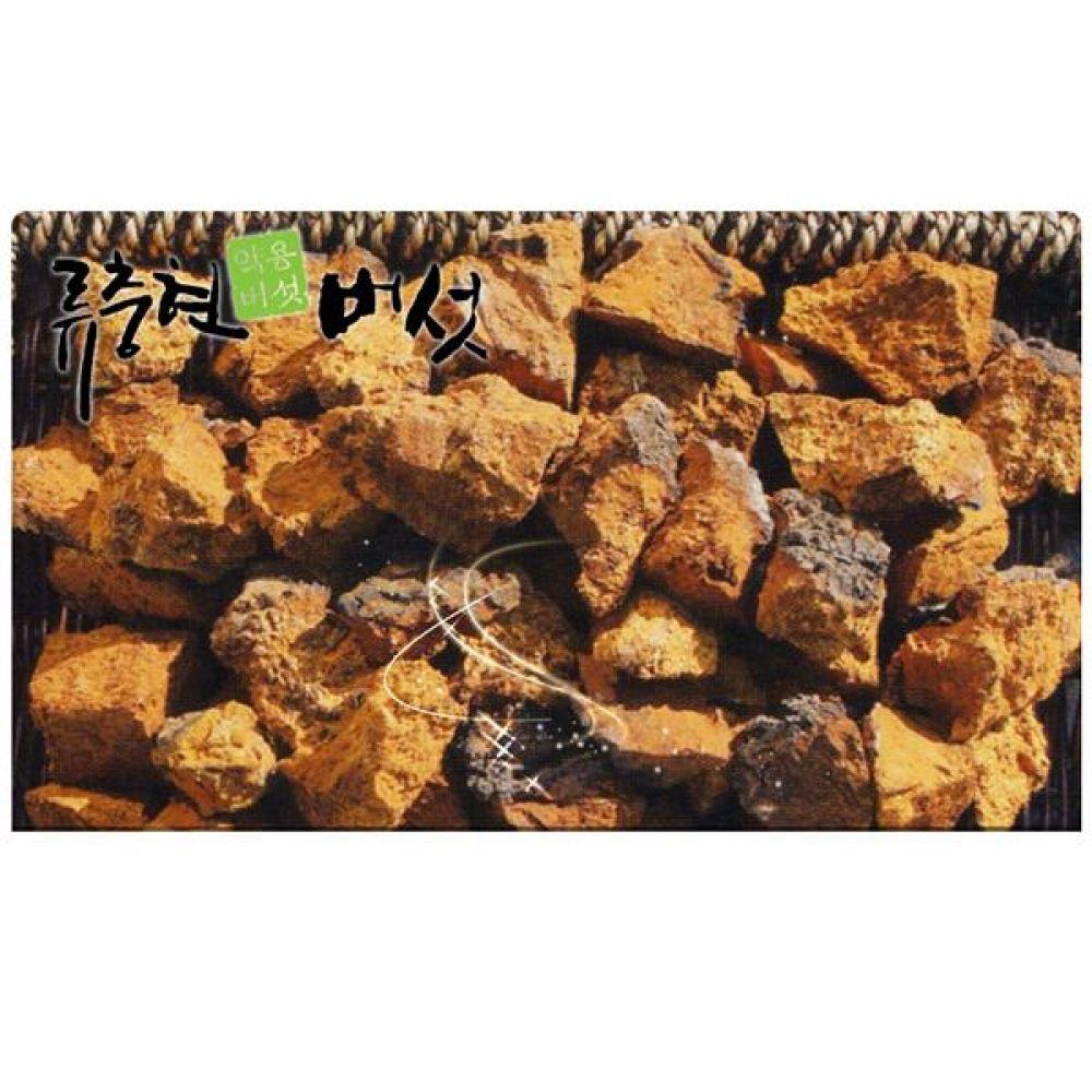 류충현 차가버섯 500g(자연산) 건강 식품 버섯 선물 차가