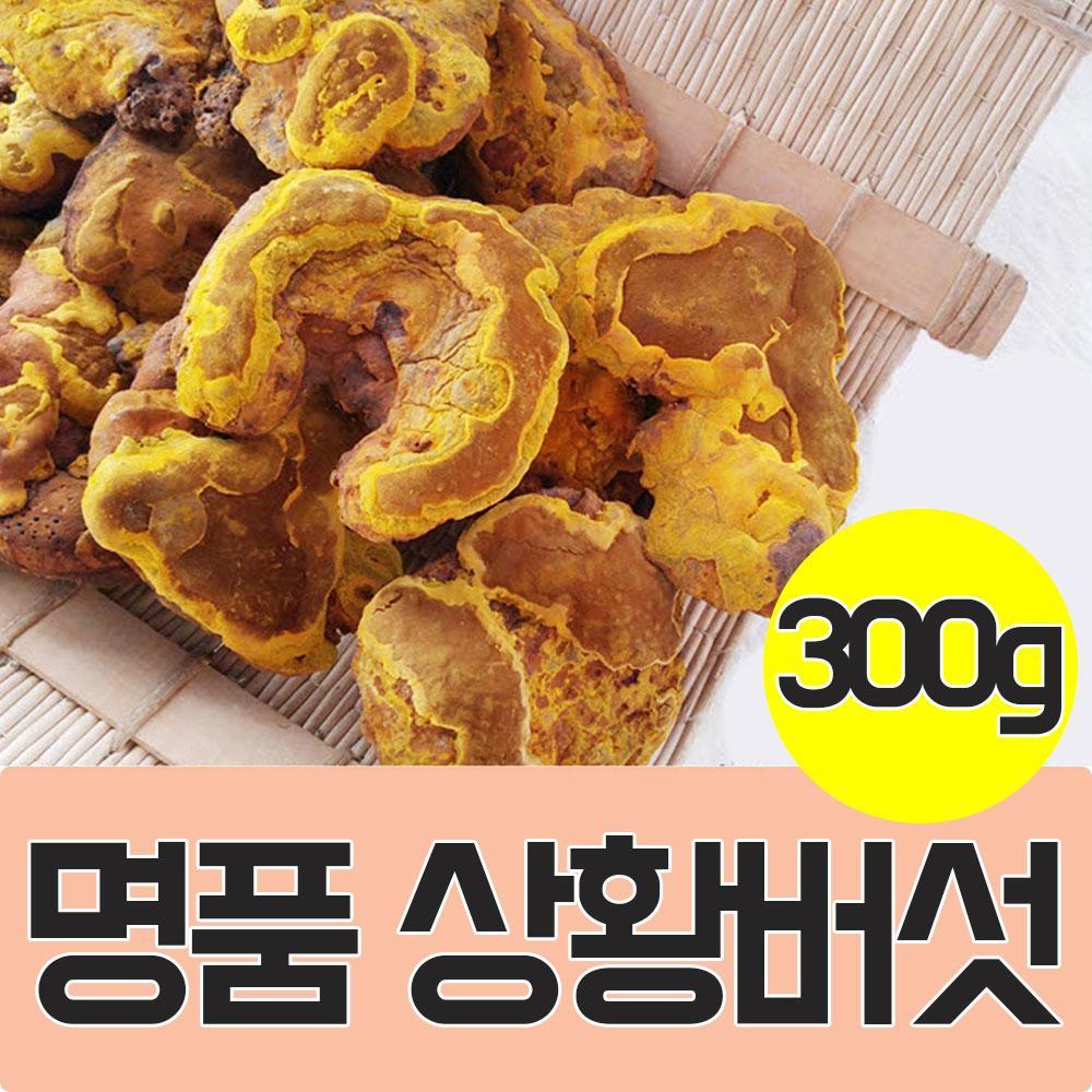 국내산 상황버섯 300g 표고버섯 송이버섯 선물 영양 건강