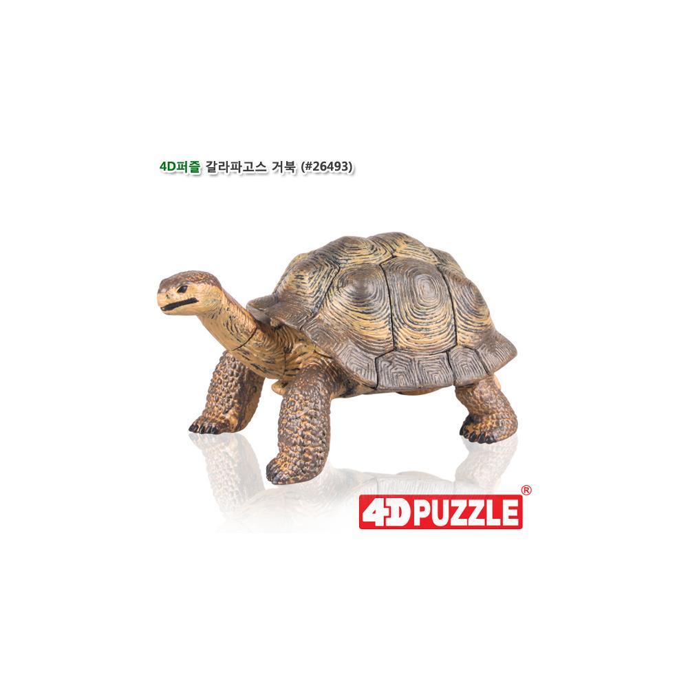 선물 입체 조립 동물 피규어 4D 퍼즐 갈라파고스 거북 입체조립 조립피규어 입체조립피규어 4D퍼즐 3D퍼즐
