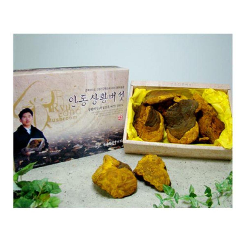 류충현 상황버섯(상품) 500g 건강 식품 버섯 선물 상황