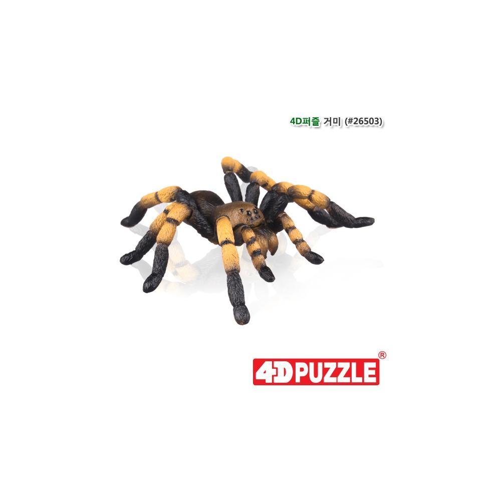 선물 입체 조립 동물 피규어 4D 퍼즐 거미 5살 6살 입체조립 조립피규어 입체조립피규어 4D퍼즐 3D퍼즐