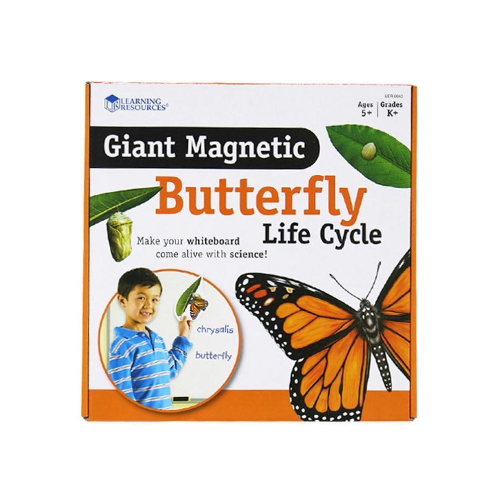 유아 어린이 아이 과학 학습 교구 나비의일생 자석 유아원 장난감 학습교구 교구 놀이교구