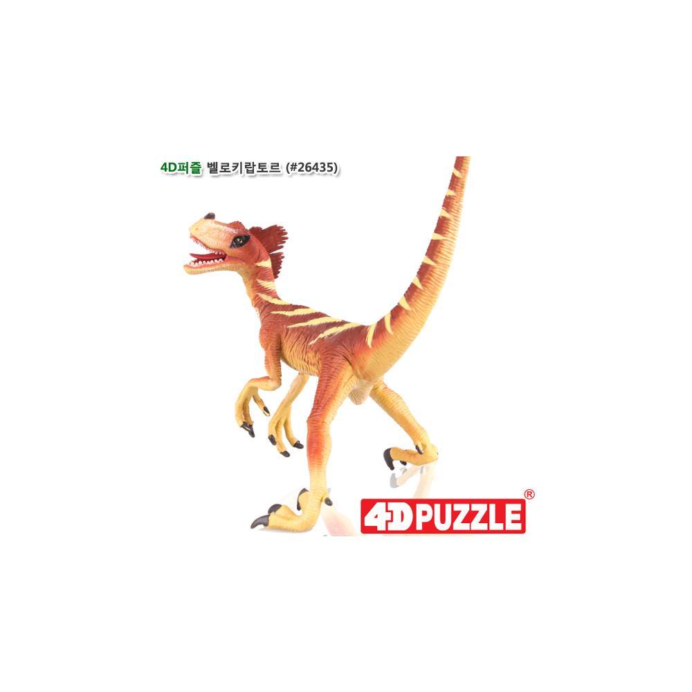 선물 입체 조립 공룡 피규어 4D 퍼즐 벨로키랍토르 입체조립 조립피규어 입체조립피규어 4D퍼즐 3D퍼즐