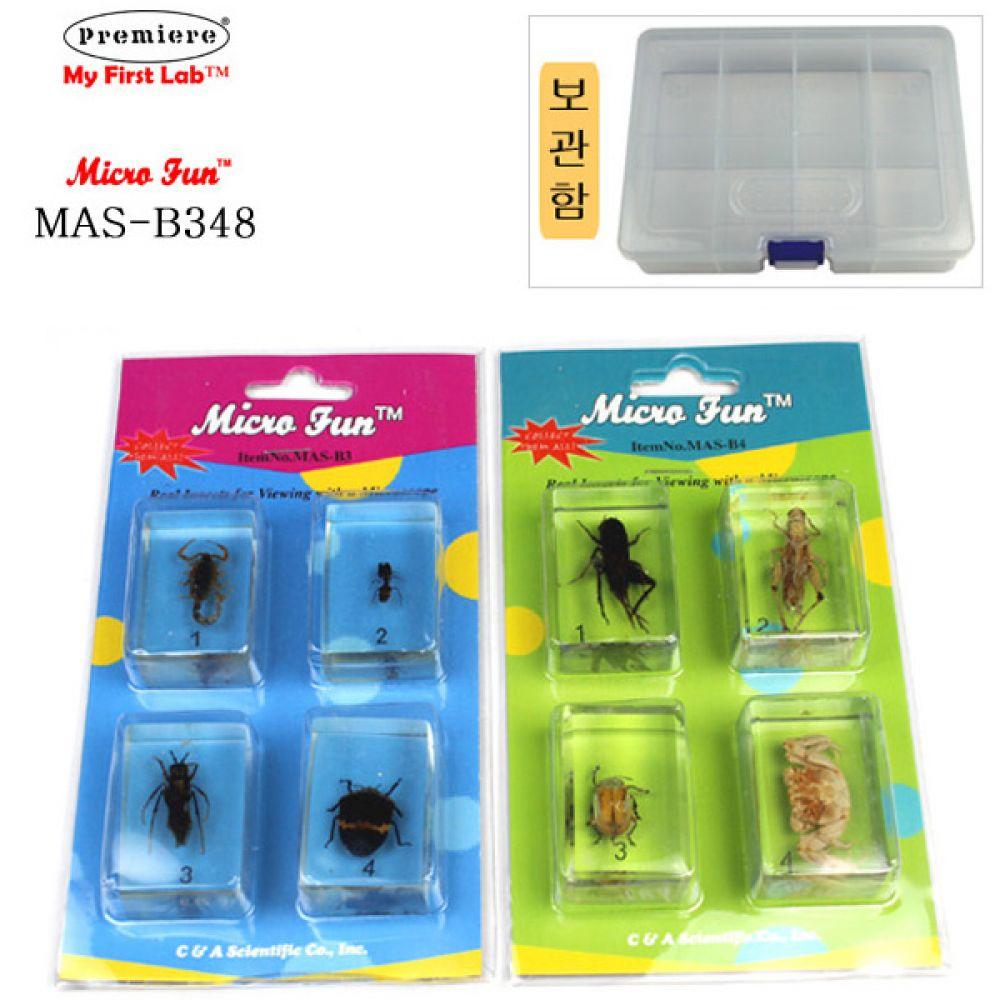 MAS-B348 표본곤충벌레 8종 BOX 현미경 과학실험 과학 과학실험 현미경 과학 학습교구 관찰