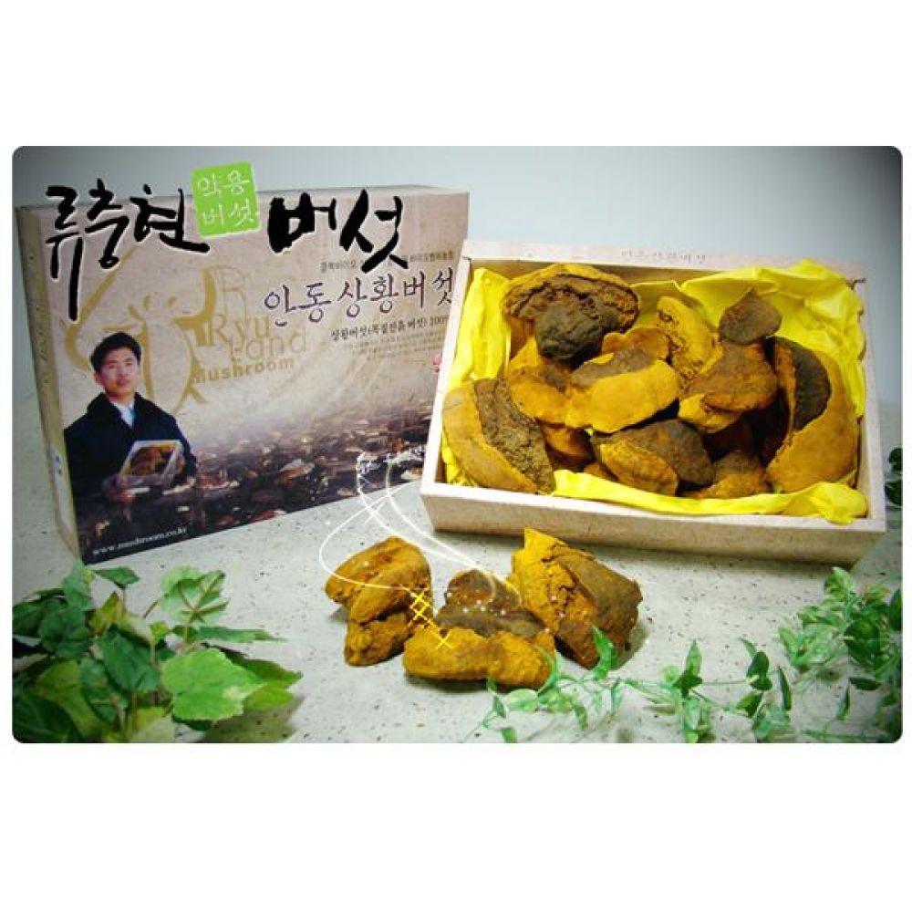 류충현 상황버섯(중품) 500g 건강 식품 버섯 선물 상황