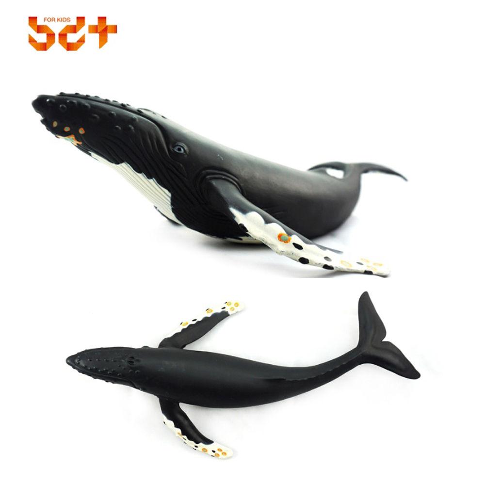 소프트애니멀 혹등고래 해양동물 동물학습 동물완구 해양동물 학습완구 동물모형 동물학습 동물완구