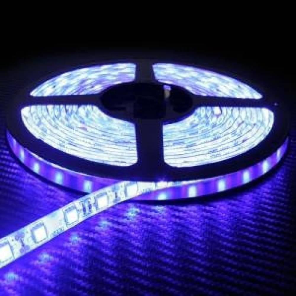 5050 3칩 LED바램프 1롤(5미터) 흰띠-블루 5050LED칩램프바 LED바 3528 칩램프 에폭시 12v 24v 실내등 풋등 미등 도어등 번호판등 전구 라이트전구 라이트 무드등 자동차용품