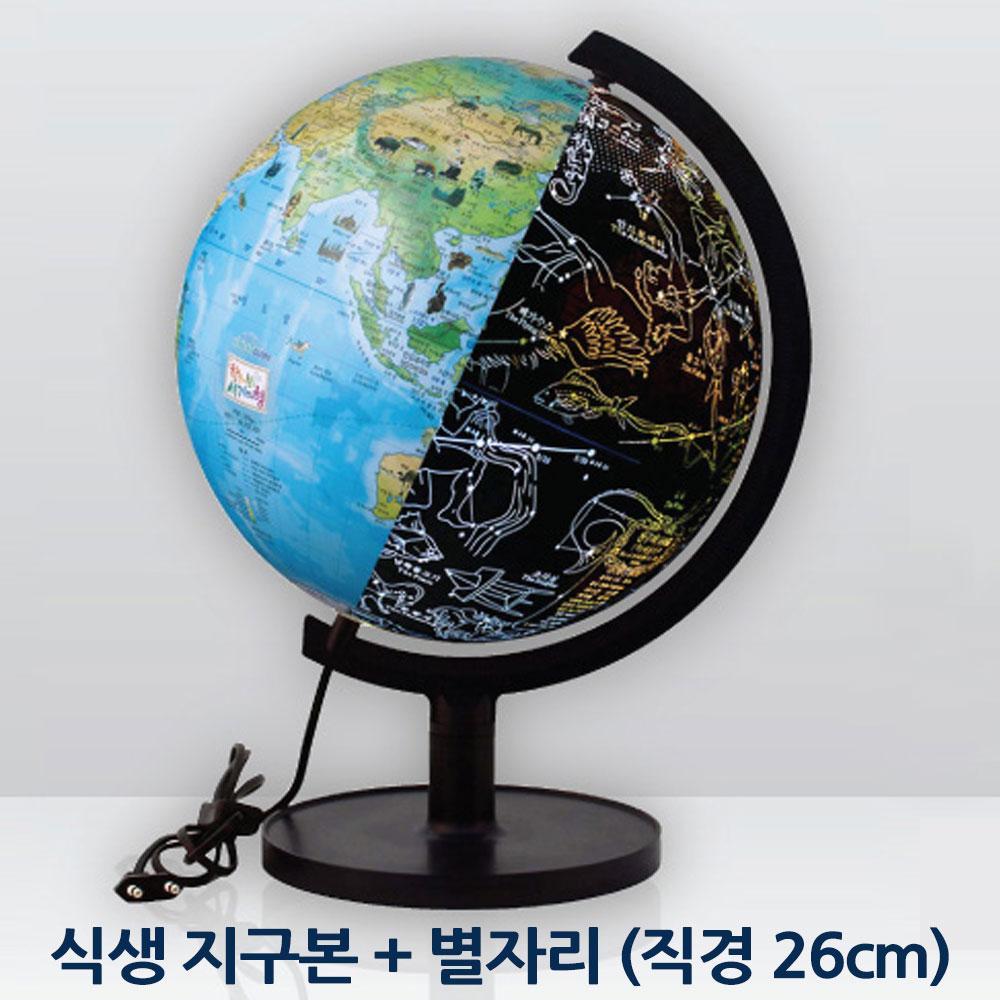 별자리 26cm 어린이 지구본 식생 관찰 생태 학습 LED 26cm 지구본 별자리지구본 식생지구본 식생도지구본