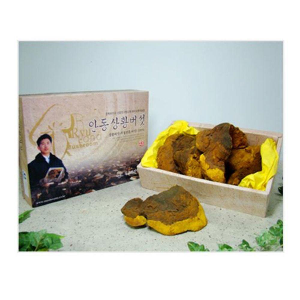 류충현 상황버섯(우수상품) 300g 건강 식품 버섯 선물 상황