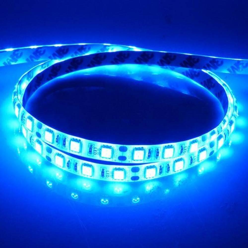 밝기향상 신제품ㅁ12V-24V 고급형 5050 3칩 LED바 블루LED - (10cm당 가격) LED바 LED램프 스마일등LED 아이라인LED 5M LED바 애니카몰LED바모음