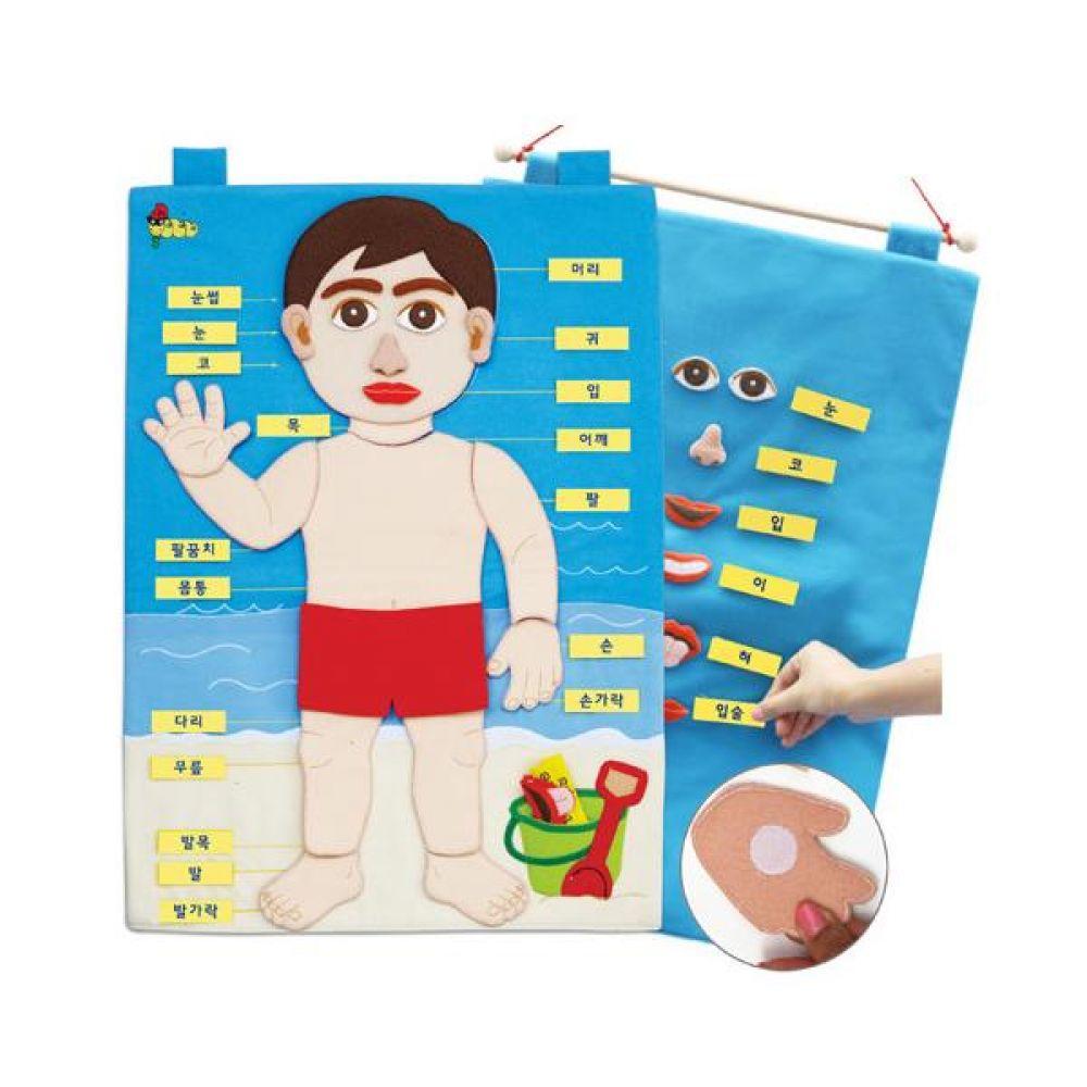 매직교구 탈부착 차트 나의 몸 완구 문구 장난감 어린이 캐릭터 학습 교구 교보재 인형 선물