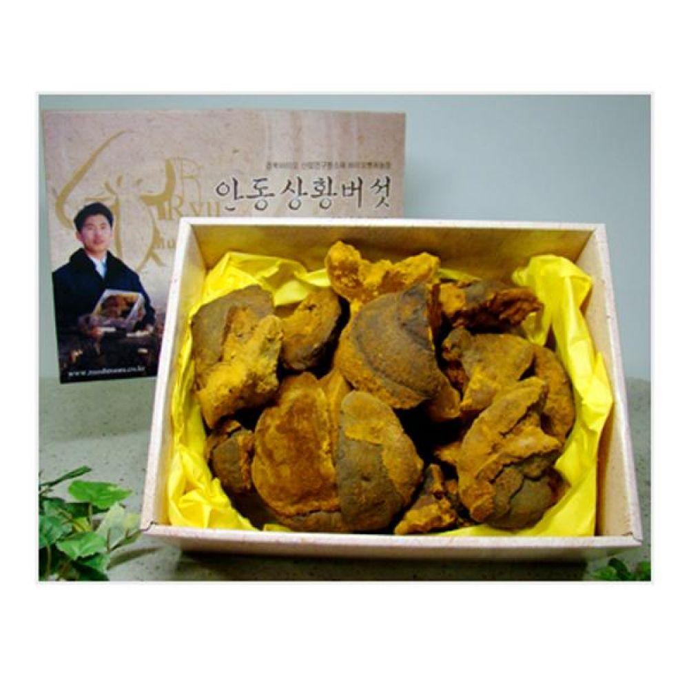 류충현 상황버섯(중품) 1kg 건강 식품 버섯 선물 상황